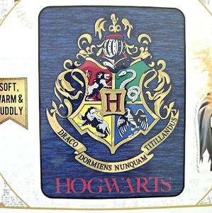 Harry Potter Wizard Class Micro Raschel Throw New